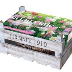 Decoratief houten kistje met 30 bloembollen fairy tale