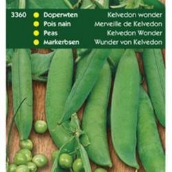 Doperwten Kelvedon Wonder (gekreuktzadig) 60/70 cm