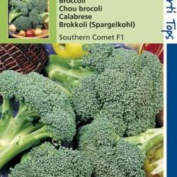 Broccoli Southern Comet / Marathon F1