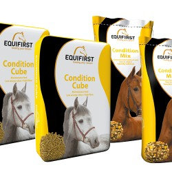 Equifirst condition cube paardenvoer (20 kg)