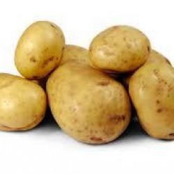 Pootaardappels Eigenheimer (28/35) prijs per kg