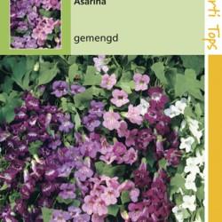 Asarina / gemengd
