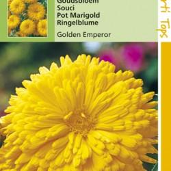 Calendula / Golden Emperor geel