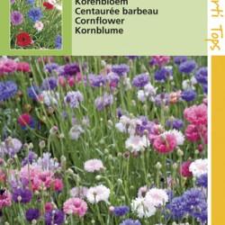 Centaurea / Korenbloem gemengd