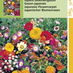 Japanse bloemgazon eenjarige lage