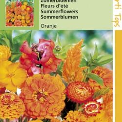 Zomerbloemen oranje tinten