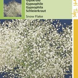 Gypsophila / Snow Flake dubbelbl. wit