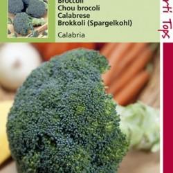 Broccoli Groene Calabria