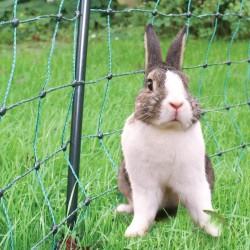 Koltec konijnennet groen 25 mtr. 50 cm. hoog