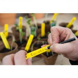 Nature plantenetiketten met potlood 10 cm. (25 stuks)