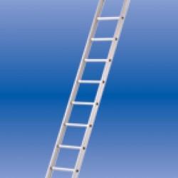 Solide enkele ladder 12 sporten zwaar rechte bomen ongecoat