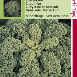 Boerenkool Middelhoge fijn gekrulde (pakje)