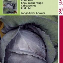 Rode Kool Langedijker bewaar, origineel
