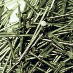 Draadnagels bl.ruitkop 2.4x50
