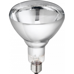 Philips biggenlamp 150W wit hardglas