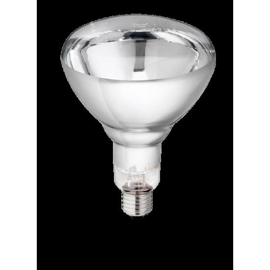 Philips biggenlamp IR250C wit